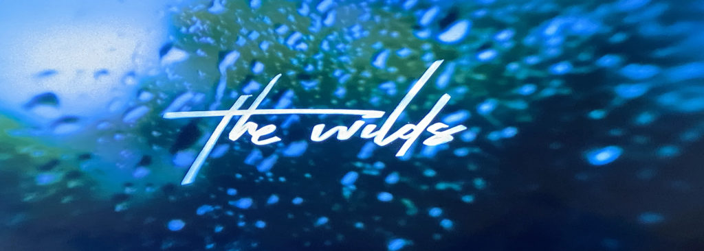 couverture_the_wilds